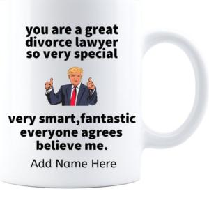 Divorce Lawyer funny 4